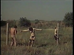Sex in Field 70s